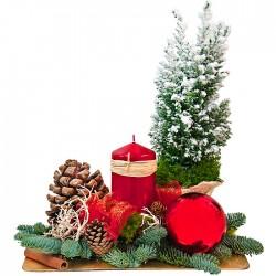 Stroik na Boże Narodzenie