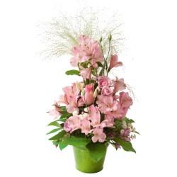 Aranżacja różowych kwiatów