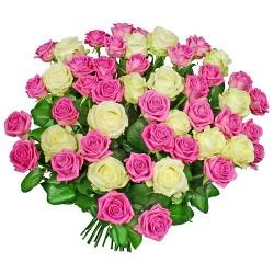 Kwiaty Przepraszam