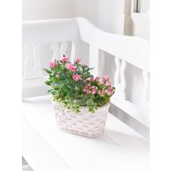 Koszyk różowych róż i kalanchoe
