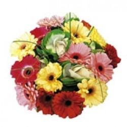 Wakacyjne kwiaty
