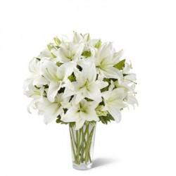 Wdzięczne lilie