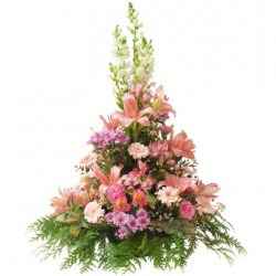 Cone-shaped arrangement