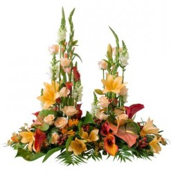 Bouquet 6DTO