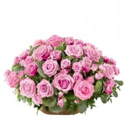 Róża pogrzebowa