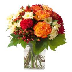 Bouquet 6BDM