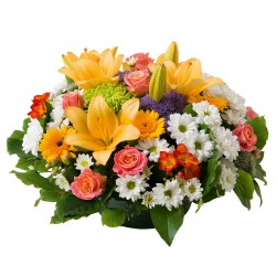 Bouquet 6CFM