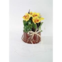 Orchidee z dekoracją w pudełku