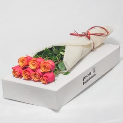 7 herbacianych róż