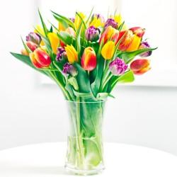 Sezonowy bukiet tulipanów
