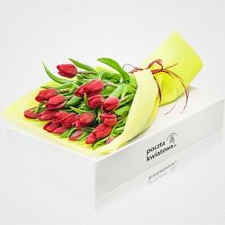 21 czerwonych tulipanów