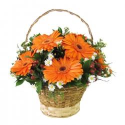 Blask - pomarańcz