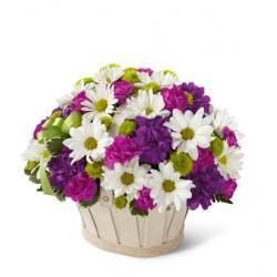 Kwitnący koszyk