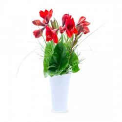 Każdy zasługuje na kwiaty