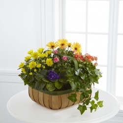 Gentle Blossoms™ Basket