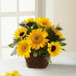 Perfect Sun™ Bouquet