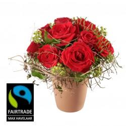 W miłości! z Fairtrade Max Havelaar
