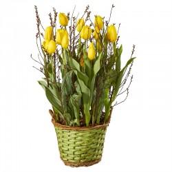 Tulipany bez ozdób