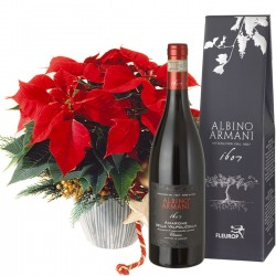 Poinsettia decorated with Amarone della Valpolicella Classico DOCG (75cl)