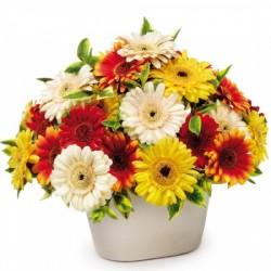 Aranżacja z kwiatów ciętych