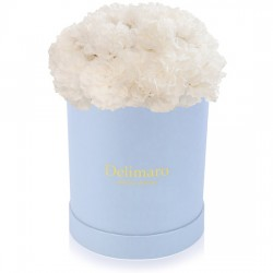 White carnations in a blue box