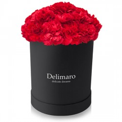 Red carnations in a black box
