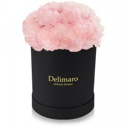 Pink carnations in a black box