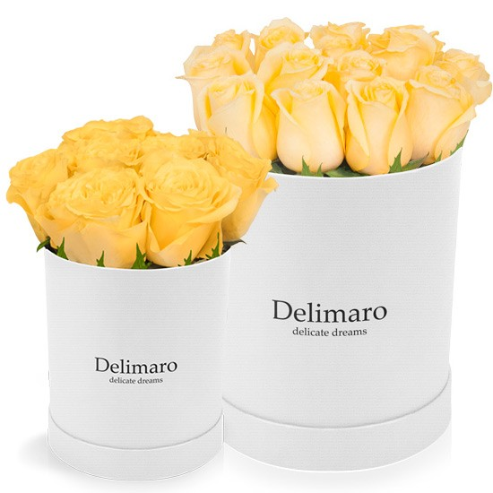 Yellow roses in a white box