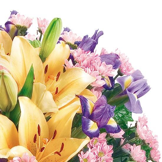Kwiaty Dzień Dobry