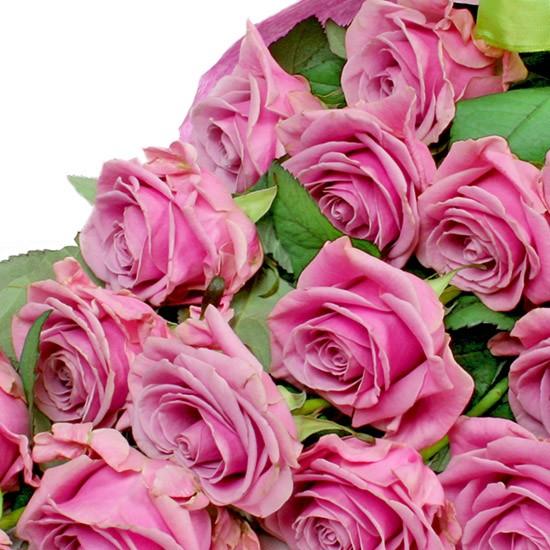 Kwiaty Różana fantazja
