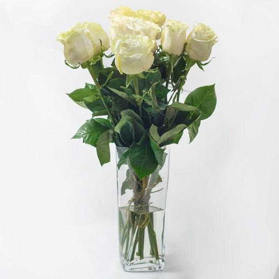 9 białych róż