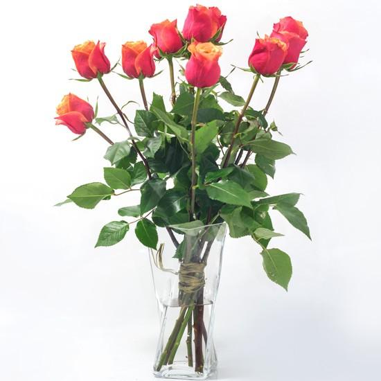 9 herbacianych róż