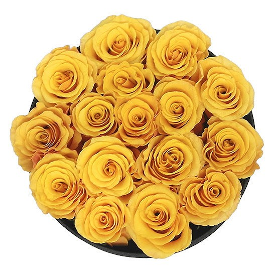 Masterbox - żółte róże w białym pudełku