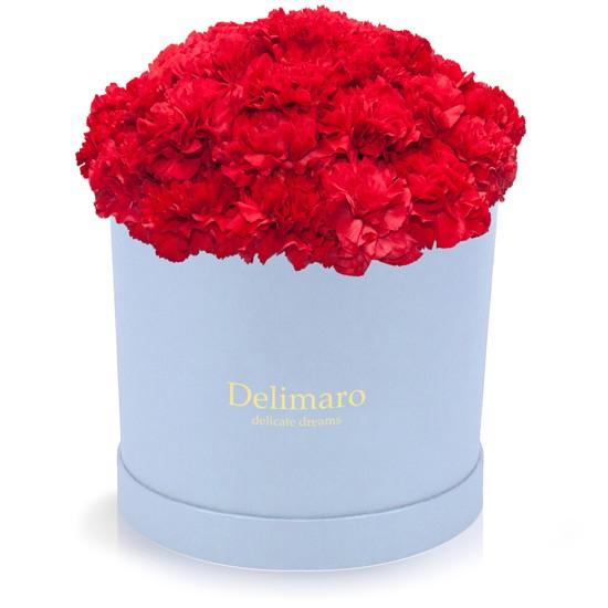 Czerwone goździki w błękitnym pudełku