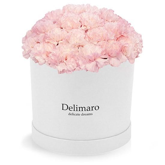 Różowe goździki w białym pudełku