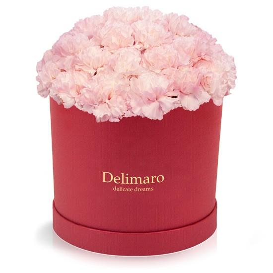 Różowe goździki w czerwonym pudełku