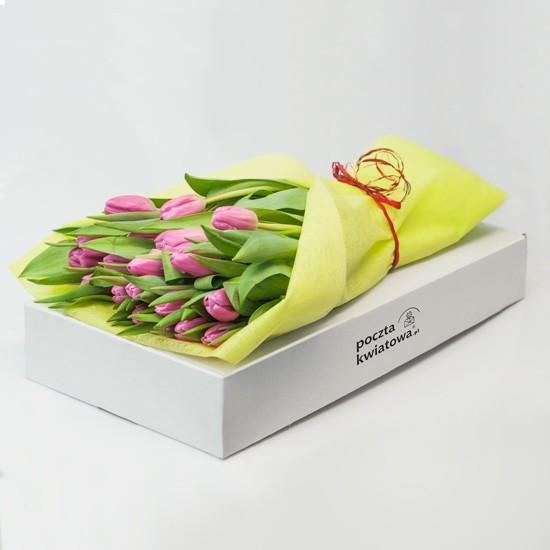 21 różowych tulipanów