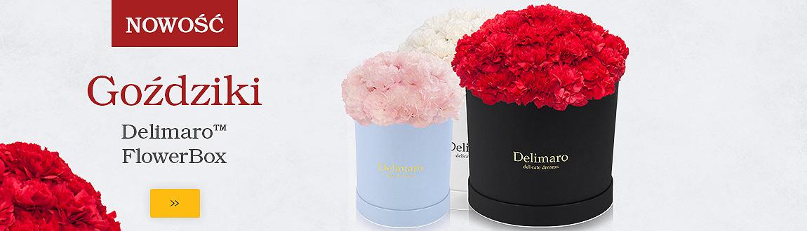 FlowerBox - goździki