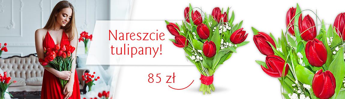 Nareszcie tulipany!