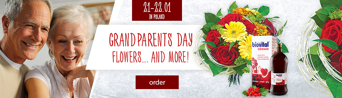 Grandparents Day in Poland
