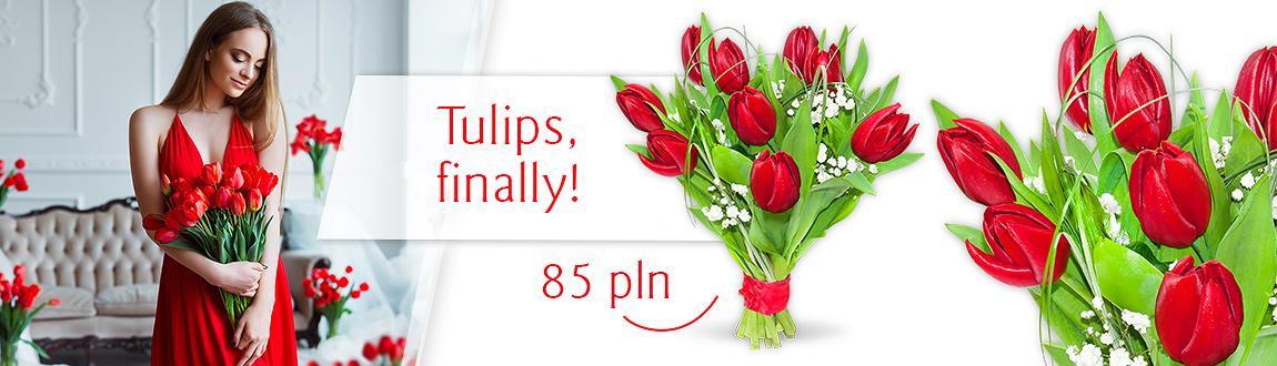 Tulips, finally!
