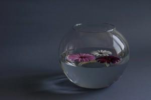 woda_kwiaty