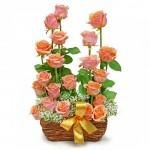 A imię jej Róża: symbolika kolorów róż