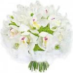 Orchidea - symbol miłości