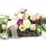 Elegancja ukryta w kwiatach - piękna Eustoma