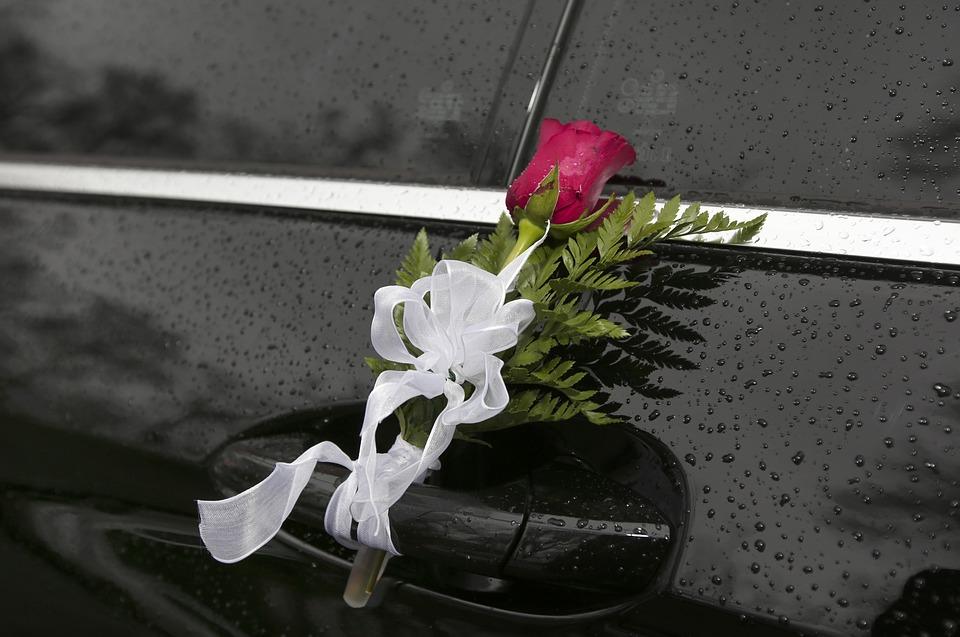 rose-1395318_960_720