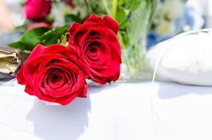 Kwiaty w kolorze czerwonym