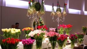 tulipany4