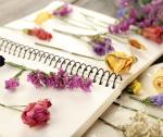 Jak wykonać dekoracje z zasuszonych kwiatów?