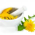 Magia roślin – lecznicze zastosowanie kwiatów
